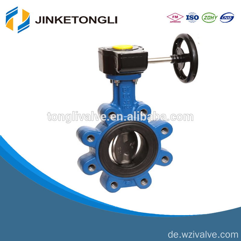 Cast Iron PTFE seated Butterfly Valve seat ring JKTL BT041L