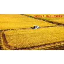 DONGYA 6N-40V 0012 New design Vibratory screenrice mill machine in philippines