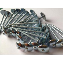 High Quality Q195 Roofing Nails with Electro Gavanized
