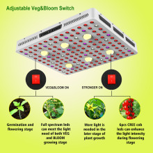 2500w Led Grow Light Hydroponic