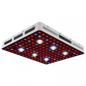 Hydroponik Cree COB Grow Lights Led