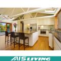 Foshan Modular Kitchen Cabinet with Popular Design (AIS-K719)
