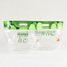 Freezer Bags Packaging Bag Clear Plastic for Fresh Vegetable and Fruit Packing / Frozen Food Plastic Package PE Stand up Pouch