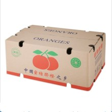 Corrugated fruit Shipping Box