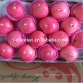 Краснеют яблоки Фуджи больших размеров
