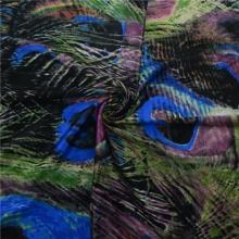 Ethnic Print Fabric Digital Textile Printing Fabric (DSC-4072)