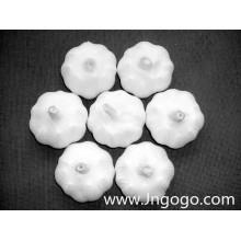 Nueva cosecha de exportación Good Quality White Garlic