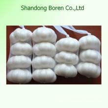 2015 Chinesische frische Größe 5.5cm Normaler weißer Knoblauch