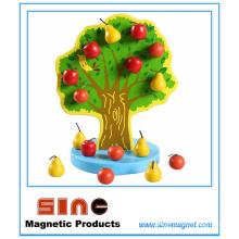 Brinquedo de árvore de frutas de madeira magnética / brinquedo educativo