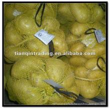Pomme de terre en sac de 20 kg