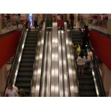 Escalator of Price Escalator Factory Cetification