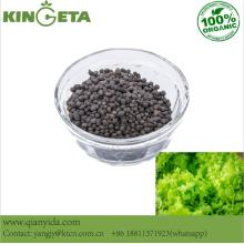 Agro Humic Acid Carbon Based Slow Release Kunsmis