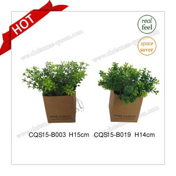 H14cm Пластиковый материал Muticolour Искусственный завод Silk Flowers