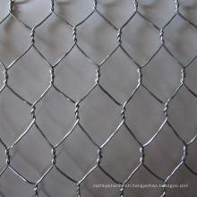High quality cheap chicken wire mesh /hexagonal wire mesh