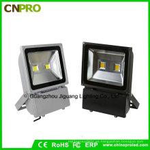 El reflector más barato de 100W LED para el jardín al aire libre del jardín de la yarda del paisaje