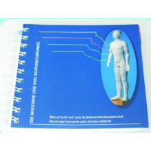 The Meridians e Acupoint Pocket Breve Manual de Introdução