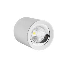 Classic LED Ceiling Light recessed white frame