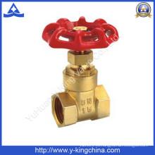 Puerta de control de latón Válvula de agua con mango de hierro / aluminio (YD-3006)