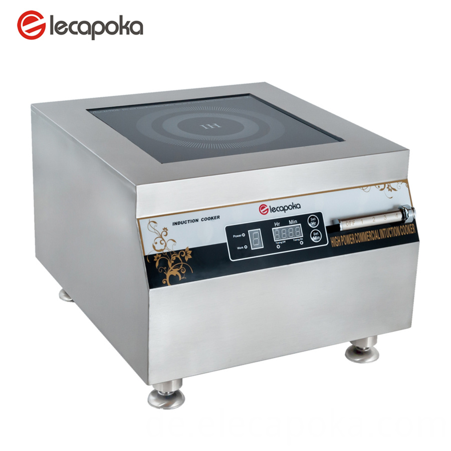 dual voltage induction cooker