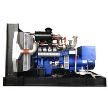 250kW Biogas Generator from China Manufacture