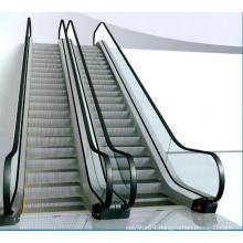 Qualified Passenger Conveyor of Low Noise (VVVF Drive)