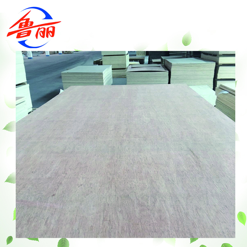 Bintangor Plywood 3 2