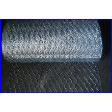 Galvanizado / PVC revestido / aço inoxidável Hexagonal Wire Netting