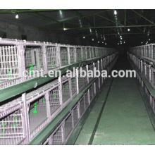 sistema automático do waterer do galinha do preço de fábrica para a gaiola das aves domésticas