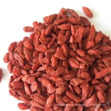 Low Pesticides EU Standard 600 Grains Goji Berry