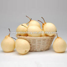 pear fresh