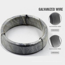 Professional SUS 304 Stainless Steel Wire Made in China