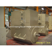 AC Sychronous Brushless Alternators (4503-6 450kw)