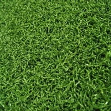 Herbe verte synthétique de mini golf artificiel de putting