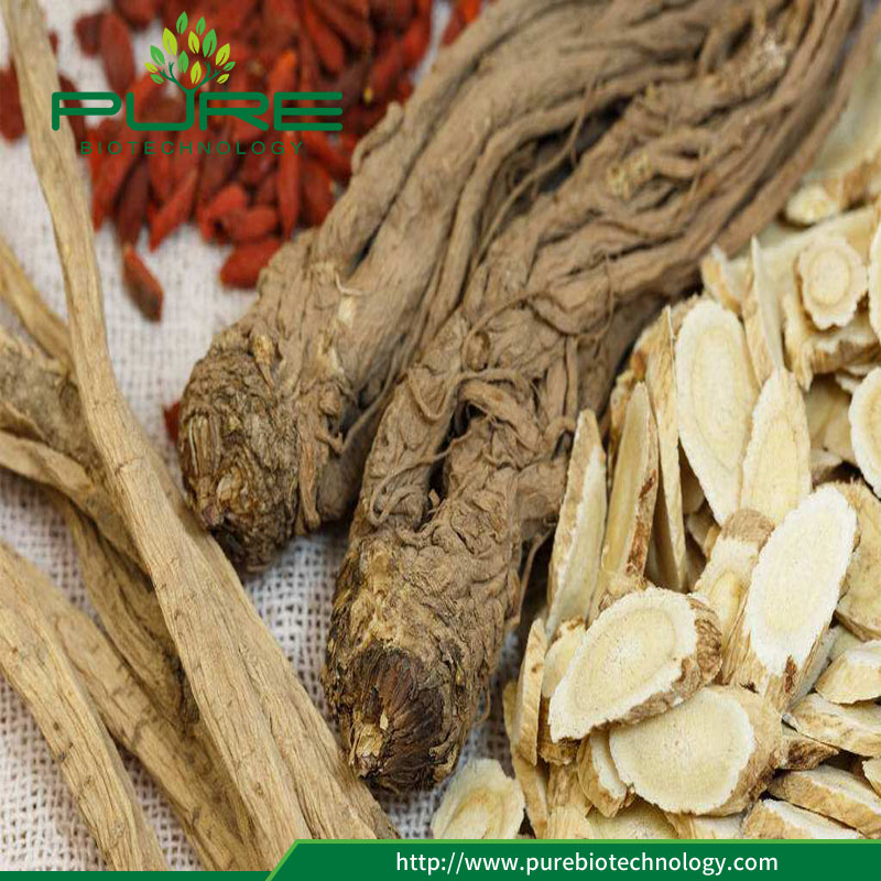 Angelica Sinensis with goji berry