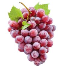 China Vitamin Rich Red Globe Crimson Seedless Grape