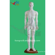 60CM Human Acupuncture Points Model, acupuncture modèle de corps humain