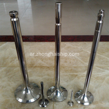 SKL 6NVD26 Marine Spare Parts Engine Valve