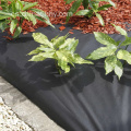 Roof Garden Anti Root Puncture Membrana impermeable