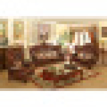 Mobília da sala de estar com conjunto de sofá de couro de madeira (529)