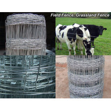 Livestock Fence/Corral Horse Fence/Cattle Fence