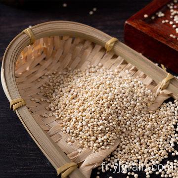 Quinoa Pur naturel De multiples bienfaits pour la santé Quinoa