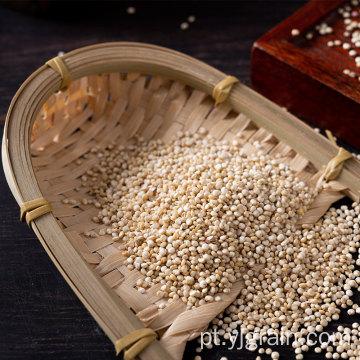 Quinoa Pure natural Vários benefícios para a saúde Quinoa