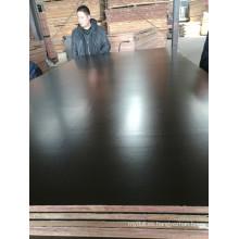 Marrón / negro Película de madera contrachapada núcleo de álamo para la construcción