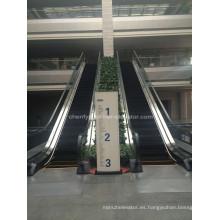 Escaleras mecánicas de interior o al aire libre de tipo delgado
