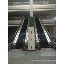 Slim Type Indoor or Outdoor Escalators