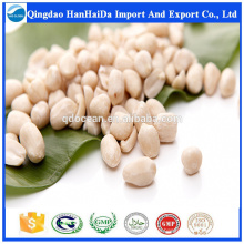 High quality blanched peanuts with reasonable price and fast delivery on hot selling !!