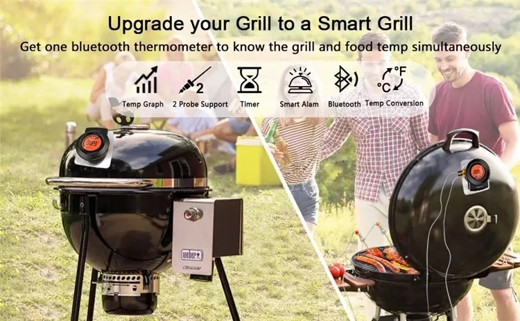 bbq thermometer.webp