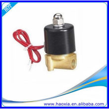 "China Manufactory 1/8 ""válvula de solenoide con AC22V0"
