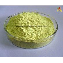 Sophora Japonica extrait la poudre de quercétine