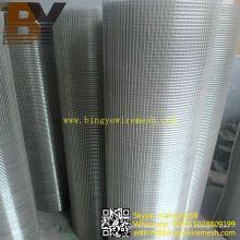 Bird Cage Stainless Steel Welded Wire Mesh